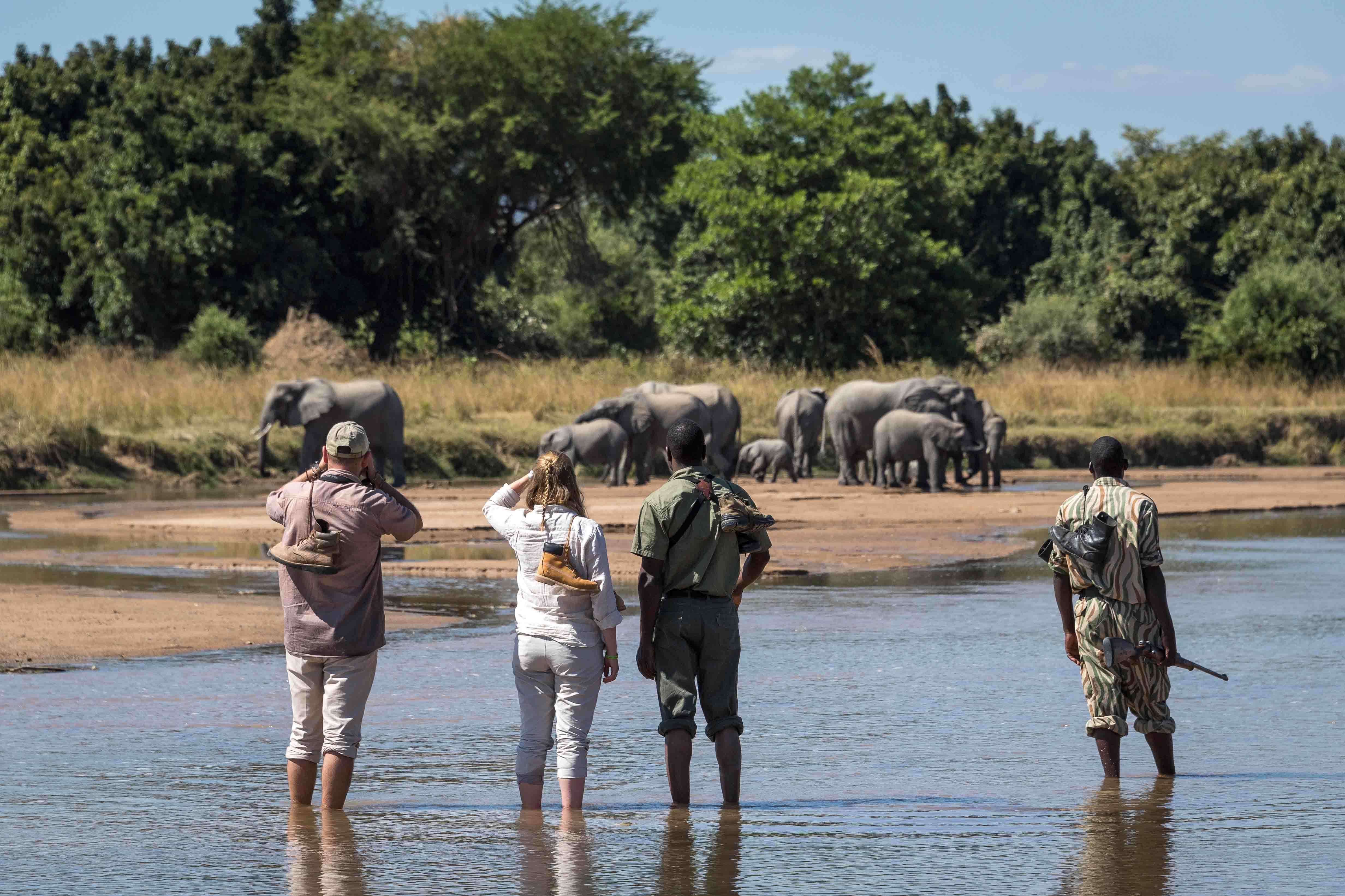 Best of South Luangwa Zambia African Safari African Travel Specialists Africa
