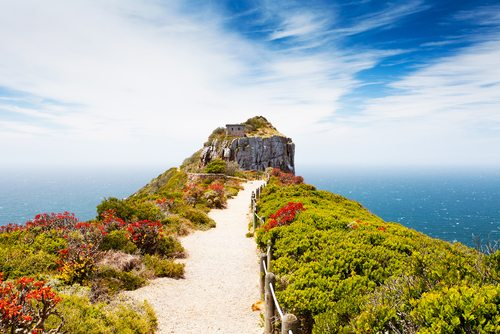 Cape Point Nature Reserve Cape Town South Africa African Travel Specialists