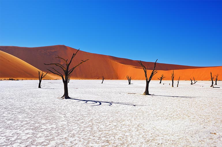 Namibia sossusvlei African Safari African Travel Specialists Africa