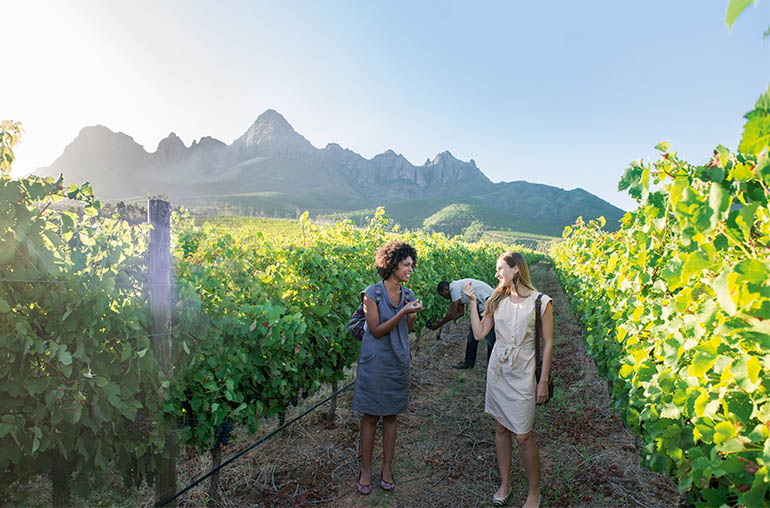winelands South Africa African Travel Specialists