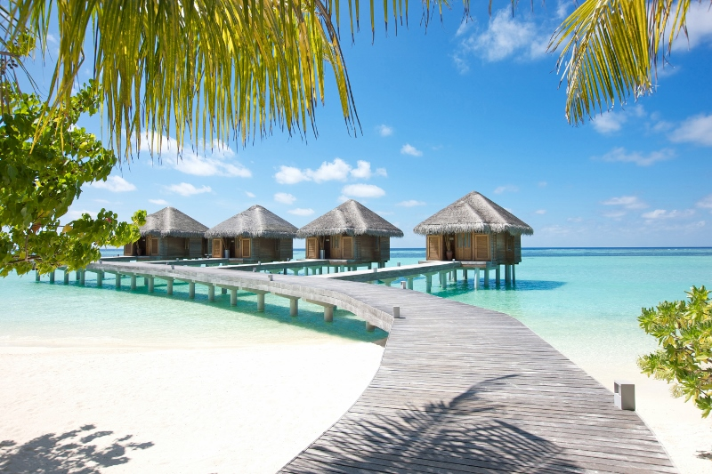 Lux South Ari Atoll Honeymoon Destination Maldives Luxury Beach Escape India Tours and Travel Specialists