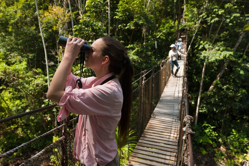 Amazon Forest Canopy Amazon Cruising Luxury Cruises Amazon Peru South America South American Travel Specialists