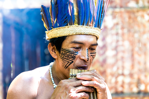 Native Brazilian Wooden Flute Indigenous Trive Amazon Amazon Cruise Brazil South America South American Travel Specialists