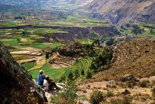 Colca Canyon  Peru  South America