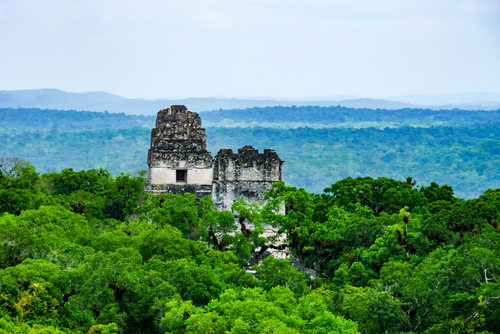 Tikal Guatemala South America South American Travel Specialists