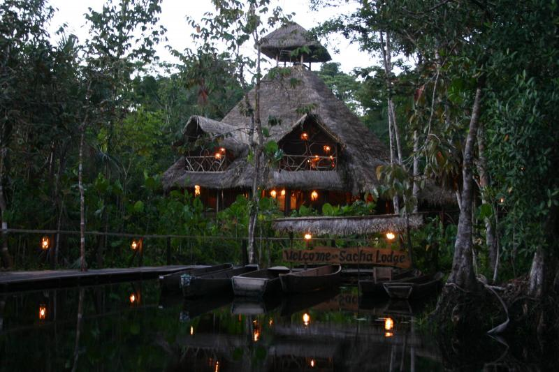 Sacha Lodge Ecuadorian Amazon Ecuador Jungle Lodge South America South American Travel Specialists