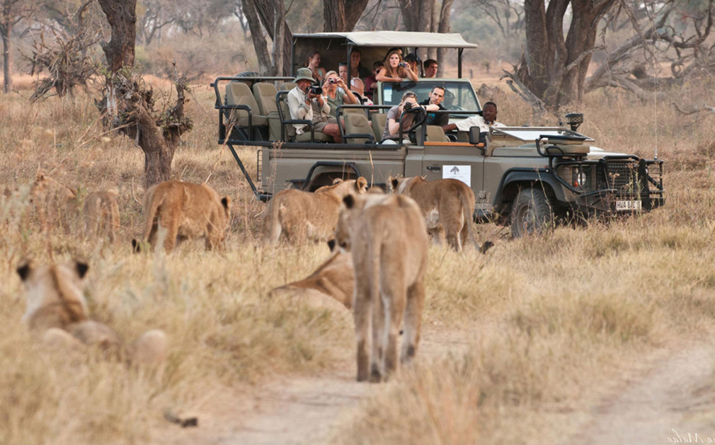 Africa African Travel Specialists Botswana Botswana Fly-in Safari Machaba Camp