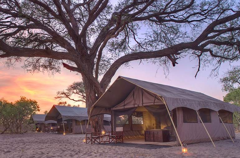 Experience a Botswana Luxury Fly-in Safari, with The African Travel Specialists, while staying at Savute Under Canvas.