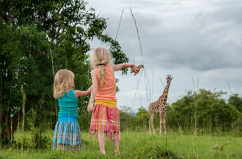 South Africa Family Safari South Africa Wildlife Safari Africa African Travel Specialists giraffe