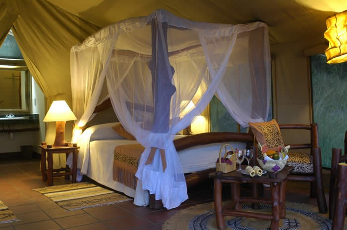 Kilaguni Serena Safari Lodge Kenya Fly-In Safari Kenya Africa African Travel Specialists Luxury Safari