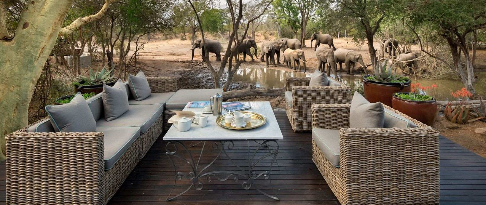 Ngala Safari Lodge Kruger Game Lodge South Africa Africa African Travel Specialists