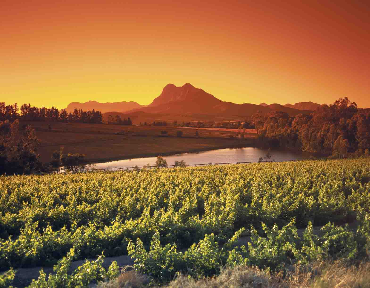 Franschhoek South africa Africa Holiday Winery