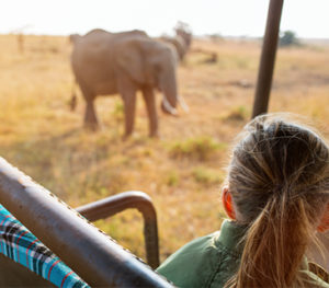 African Travel Specialists