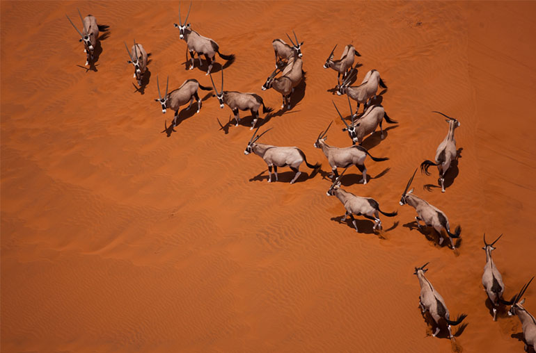 deserts rivers and wildlife Namibia Africa African travel specialists