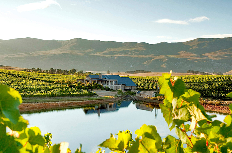 Luxury Wine Journey South Africa African Travel Specialists