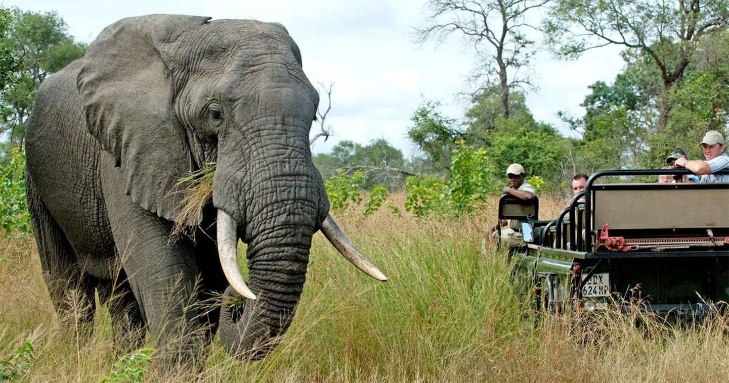 Nottens Bush Lodge South Africa & Mauritius African Travel Specialists